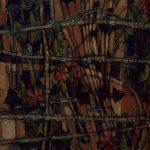 Les Géraniums dans les joncs et les jeux de la lumière sur un mur de brique